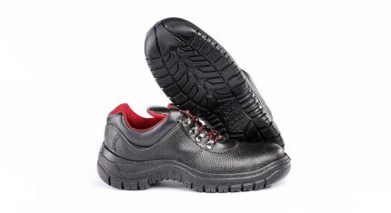 alborz safety shoes